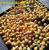 Máy hun khói gà vịt, xúc xích – Máy xông khói thực phẩm